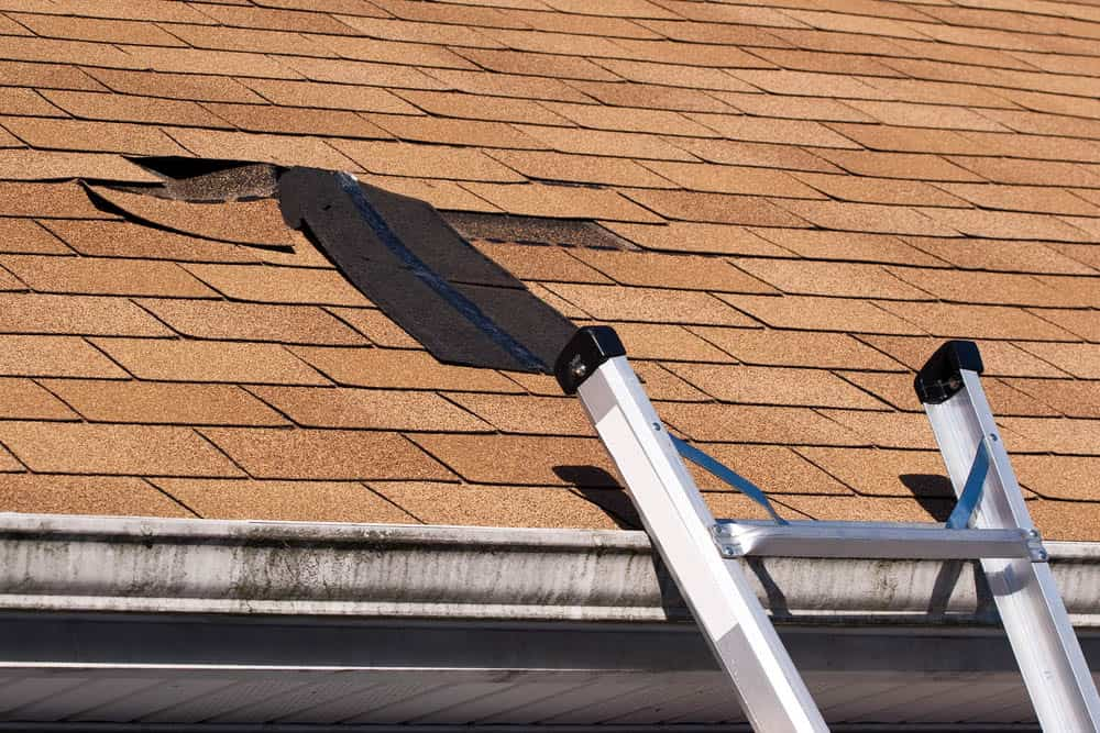 Common Roof Leaks You May Experience
